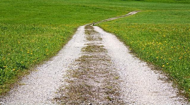 遥かなる道を・・・師とともに・・・。